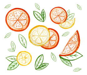 Hand drawn watercolor illustrations of slices of lemon and orange fruits with leaves. Set.