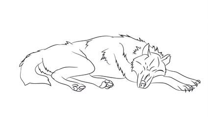 wolf lies, lines, vector