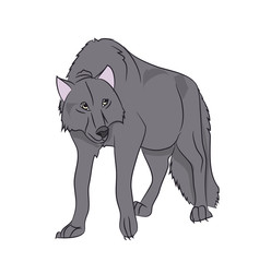 wolf stands, color vector