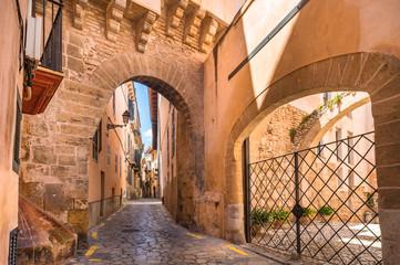 Idyllic narrow street with gate of Almudaina at the old historic city center of Palma de Mallorca
