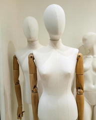 A view on the fashion manneqins, March 2018.