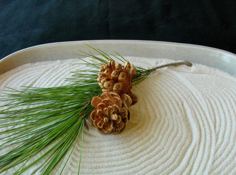 Stress free holidays concept: mini zen garden with white sand, pine cones and green twig, isolated on black background.
