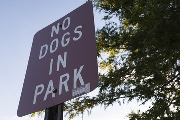 No Dogs In The Park Sign In A Park Block Letters