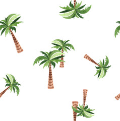 Palm tree collection.