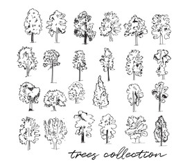 trees vector watercolor sketch collection. hand drawn trees illustration.