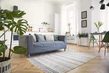 Modern and design scanidnavian open space with kitchen and living room. Sunny and bright space whit...