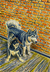 Two funny dogs sitting next to each other. Alaskan Malamutes. Interior of a rural house, brick wall and wooden floor. Bright colors. Watercolor painting.