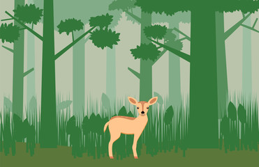 Deer standing in a green jungle vector image