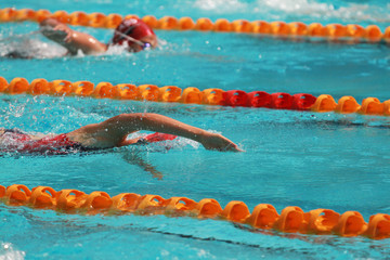 Swimmers swim free style, front crawl or forward crawl stroke in a swimming pool for competition or race