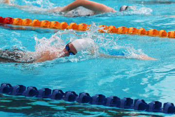 Swimmers swims free style in a swimming pool for competition or race