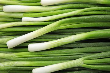 Fresh green onion as background