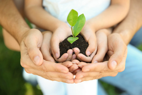 Family holding soil with green plant in hands on blurred background