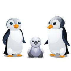 A set of fun animated penguins isolated on white background. Vector cartoon close-up illustration.