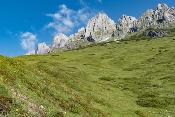 baeutiful spring mountain alpine nature