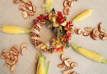 Fall composition for thanksgiving day with corn,apple,mushrooms and pumpkin.