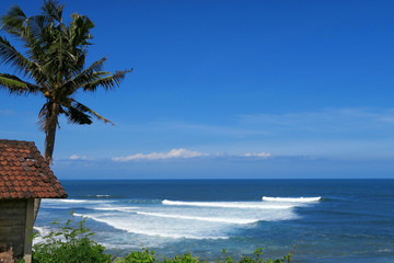 Hut and palm at Balean surf spot, Bali, Indonesia