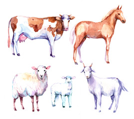 Farm animals. Cow, horse, sheep, goat. Watercolor illustration