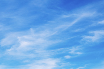 abstract white clouds in a blue sky