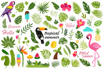 cartoon set of flat summer decor elements. tropical design. vector illustration