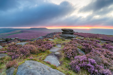 Wall Mural - Summer Sunrise in the Peak District