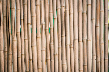 Bamboo Stick Fence