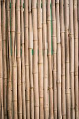 Natural Bamboo Fence
