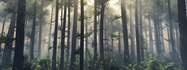 Foto op Canvas Grijze traf. Trees in the fog. The smoke in the forest in the morning. A misty morning among the trees. 3D rendering