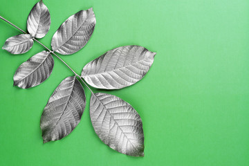Silver leaves on the green background.Nature concept.