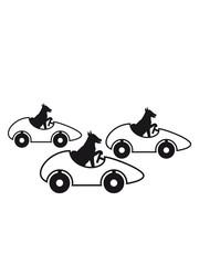 rennen wettrennen auto fahren führerschein schnell hund niedlich süß haustier herrchen frauchen guter good boy girl silhouette schwarz umriss