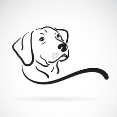 Vector of labrador dog head design on white background., Pet., Animals. Easy editable layered vector illustration.