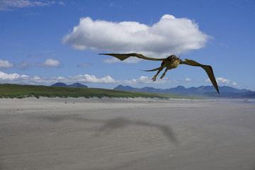 3d rendering illustration of a dragon flying over an Oregon beach