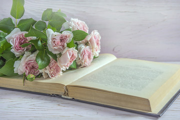 Bunch of pink english roses and old book on white paint wooden background with copy space