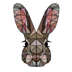 Low poly and wireframe rabbit face on white background, symmetrical vector illustration EPS 10 isolated.  Polygonal style trendy modern logo design. Suitable for printing on a t-shirt or sweatshirt.