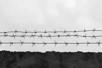 Barbed wire on fence, cloudy sky, black and white