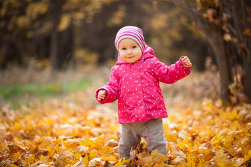 Little kid is playing and walking in autumn park. Baby looks at fallen leaves and smile. Girl is dressed in warm hat and jacket.