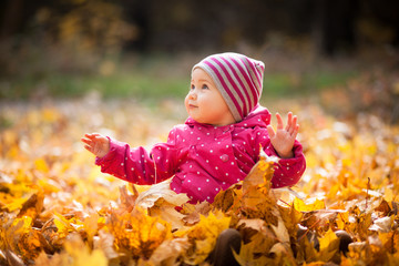 Little kid is playing and sitting in fallen leaves in autumn park. Baby smiles. Girl is dressed in warm hat, jacket.