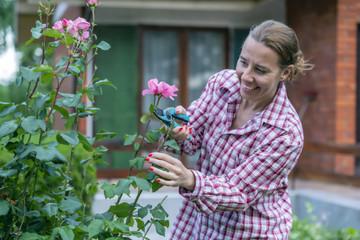 Maintenance of the Garden