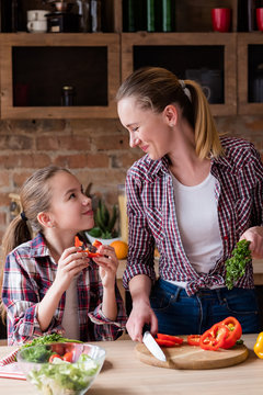 family cooking. mother and daughter loving relationship. food preparation and healthy lifestyle
