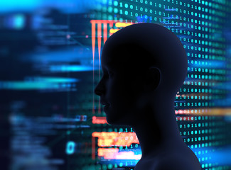 silhouette of virtual human and programming technology