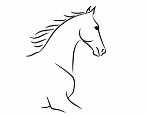 Horse head graphic logo template, vector illustration on white background. Stylish horse head outline for stable, farm, club race design. Running stallion for equestrian sport competition.