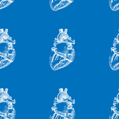 Seamless blue background with a sketch of the human heart. Vector