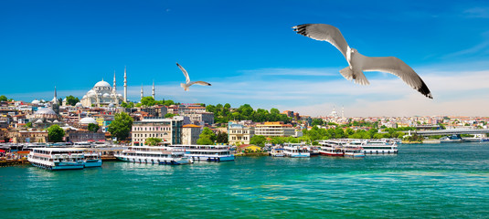 Aluminium Prints Turkey Golden Horn Bay of Istanbul