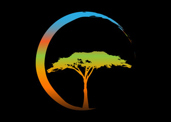 African tropical tree logo icon multi color, acacia tree silhouette, vector isolated or black background