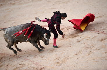 Spanish bullfighter Javier Castano is tossed by a bull on the third day of the San Fermin festival in Pamplona