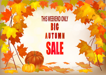Vector illustration of autumn foliage, discount. Sales in the fall.