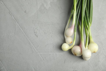 Fresh green onion on table, top view