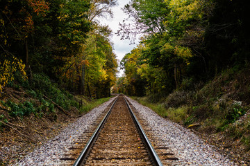 An abandoned railroad in the middle of a forest in fall