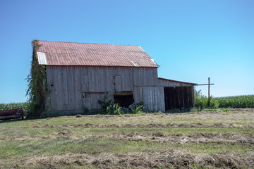 Old barn in grass field