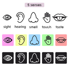 Five human senses sight, hearing, smell, touch and taste vector line icon illustration.