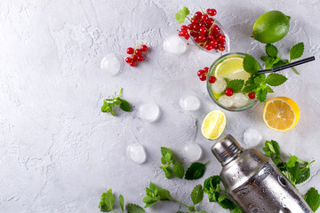 Cocktail shaker, lemon, lime, mint leaves , red currant  and  ice  for preparing a summer cocktail